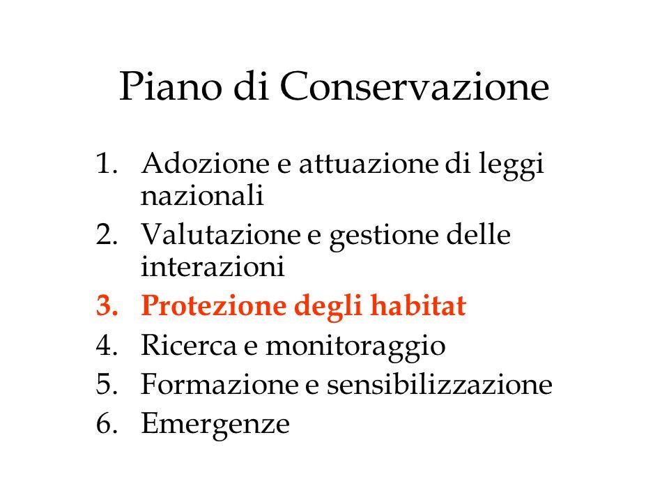 Piano di Conservazione