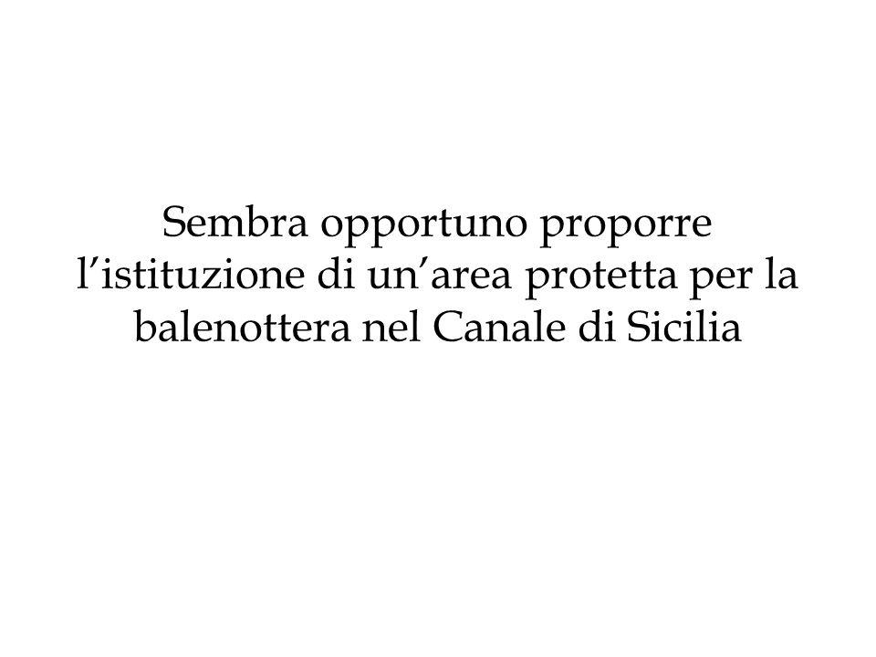 Sembra opportuno proporre l'istituzione di un'area protetta per la balenottera nel Canale di Sicilia