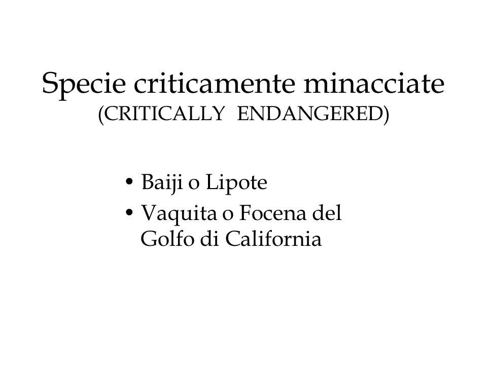 Specie criticamente minacciate (CRITICALLY ENDANGERED)