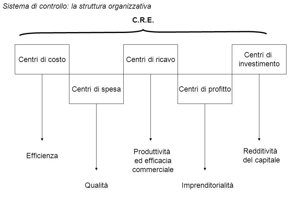 Sistema di controllo: la struttura organizzativa