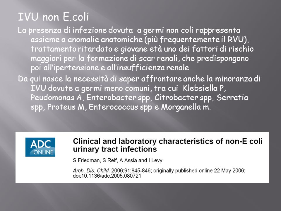 IVU non E.coli