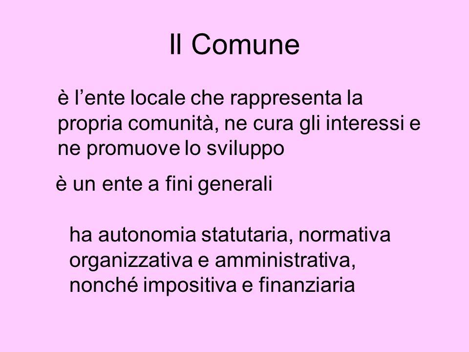 Il Comune è l'ente locale che rappresenta la propria comunità, ne cura gli interessi e ne promuove lo sviluppo.