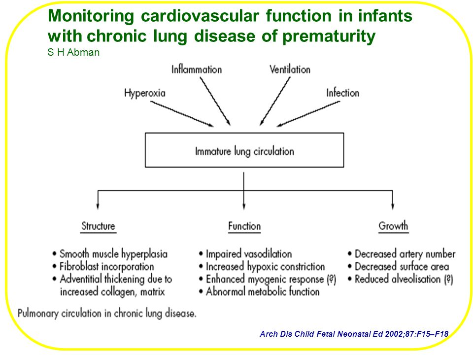 Monitoring cardiovascular function in infants with chronic lung disease of prematurity