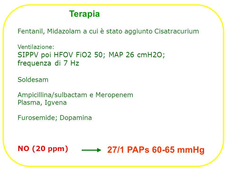 Terapia 27/1 PAPs 60-65 mmHg SIPPV poi HFOV FiO2 50; MAP 26 cmH2O;