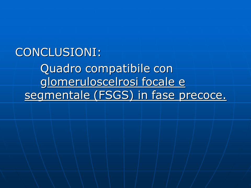 CONCLUSIONI: Quadro compatibile con glomeruloscelrosi focale e segmentale (FSGS) in fase precoce.