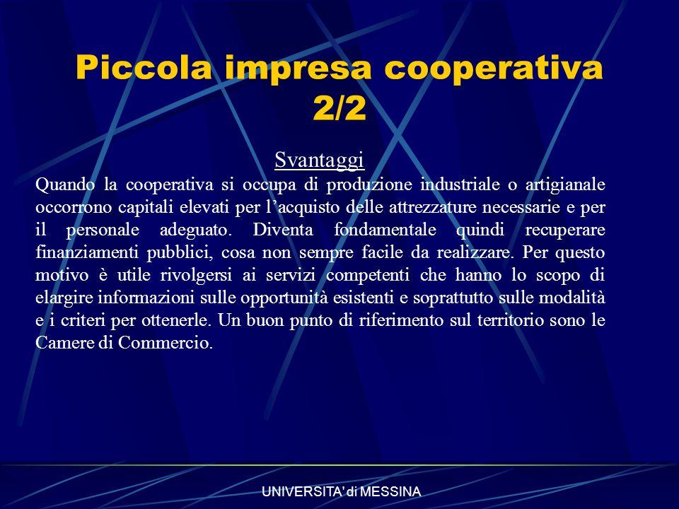 Piccola impresa cooperativa 2/2