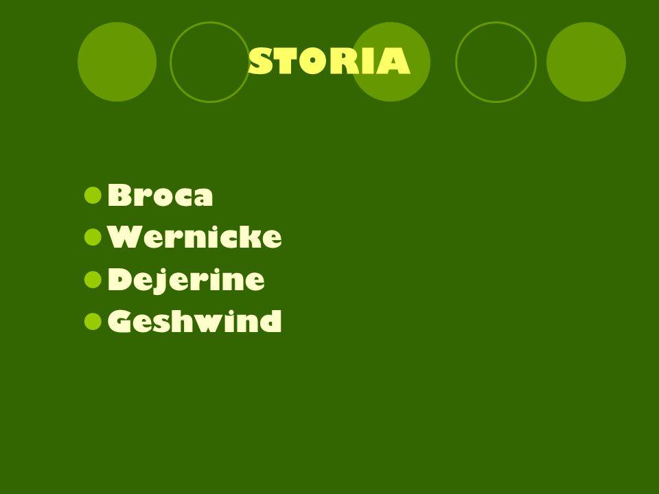 STORIA Broca Wernicke Dejerine Geshwind