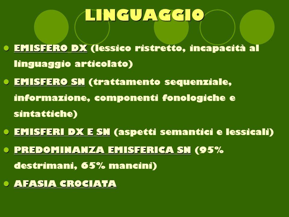 LINGUAGGIO EMISFERO DX (lessico ristretto, incapacità al linguaggio articolato)