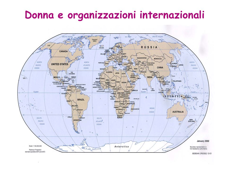 Donna e organizzazioni internazionali