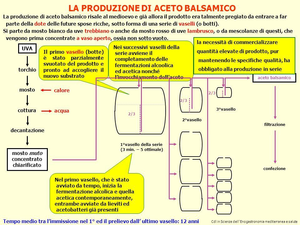 LA PRODUZIONE DI ACETO BALSAMICO mosto muto concentrato