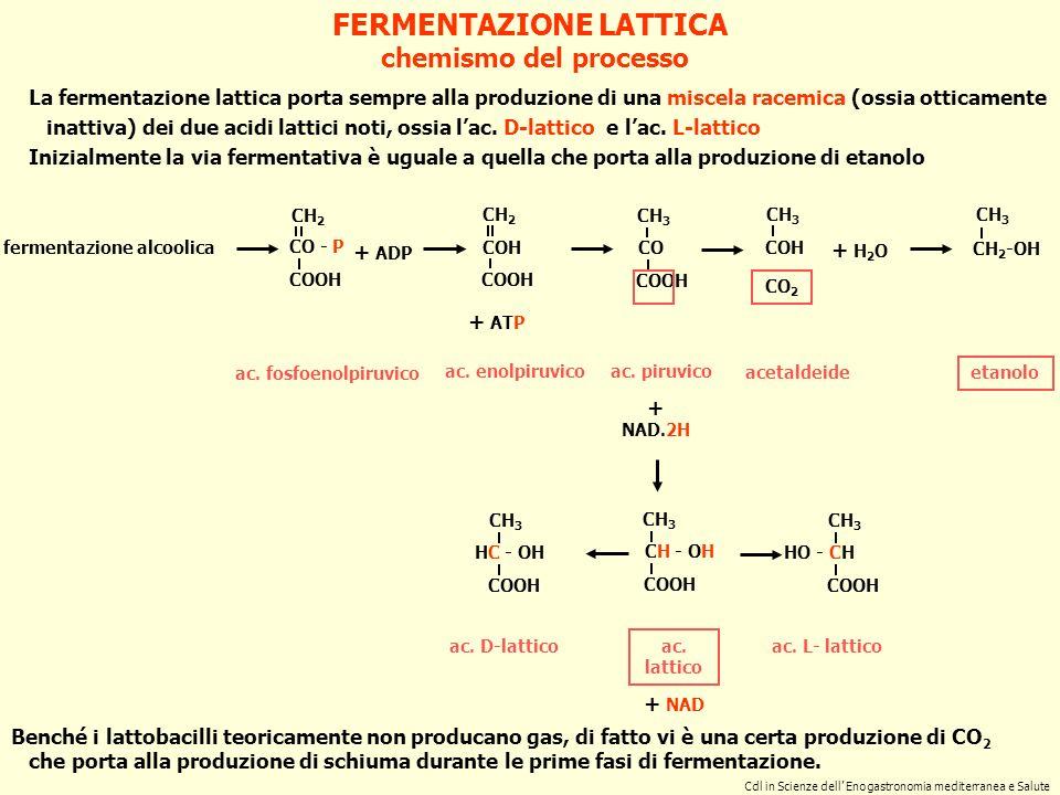 FERMENTAZIONE LATTICA fermentazione alcoolica