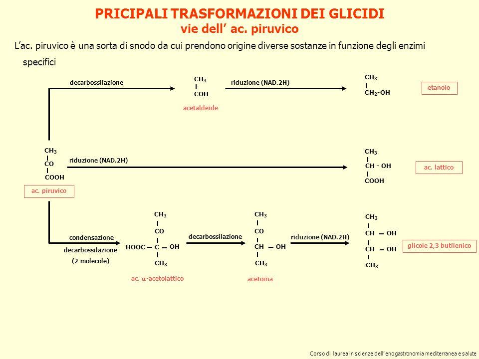 PRICIPALI TRASFORMAZIONI DEI GLICIDI