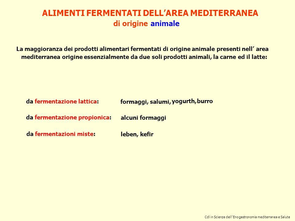 ALIMENTI FERMENTATI DELL'AREA MEDITERRANEA