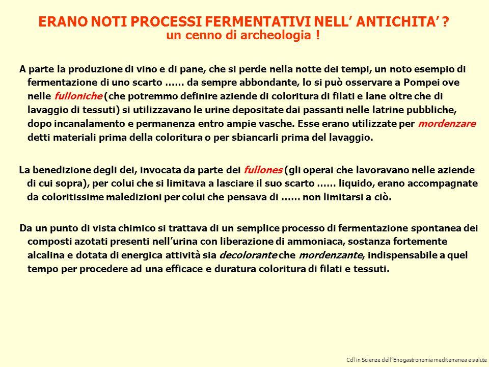 ERANO NOTI PROCESSI FERMENTATIVI NELL' ANTICHITA'