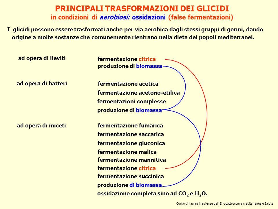 PRINCIPALI TRASFORMAZIONI DEI GLICIDI