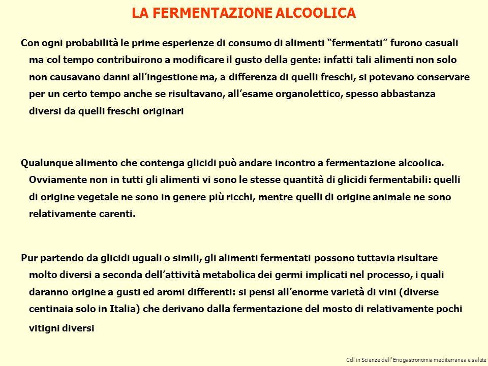LA FERMENTAZIONE ALCOOLICA