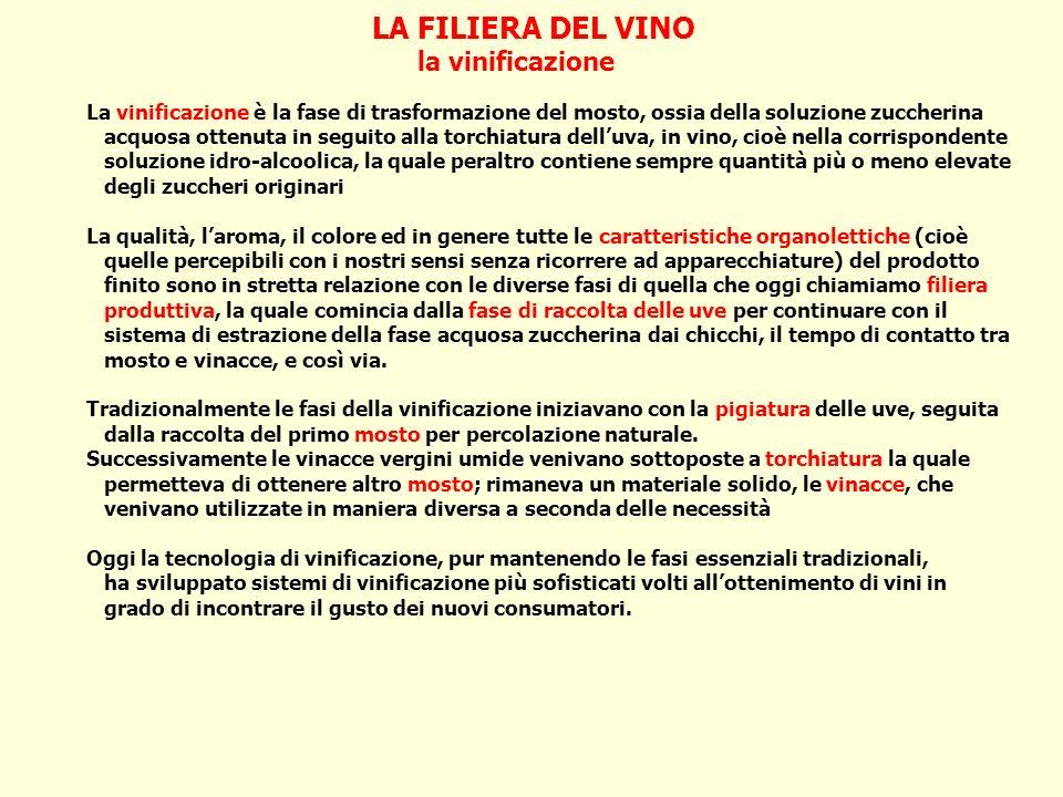 LA FILIERA DEL VINO la vinificazione