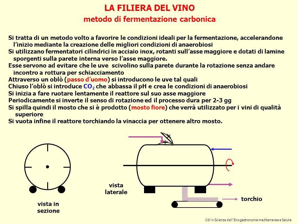 metodo di fermentazione carbonica
