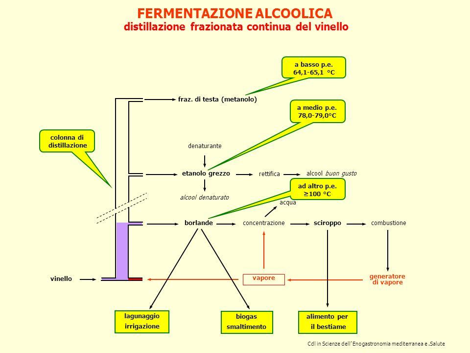 FERMENTAZIONE ALCOOLICA distillazione frazionata continua del vinello