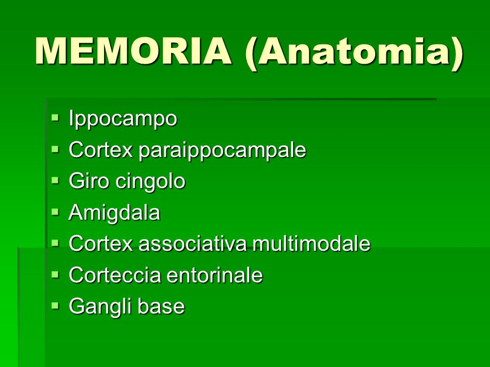 MEMORIA (Anatomia) Ippocampo Cortex paraippocampale Giro cingolo