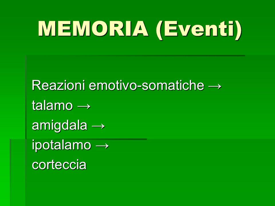 MEMORIA (Eventi) talamo → amigdala → ipotalamo → corteccia