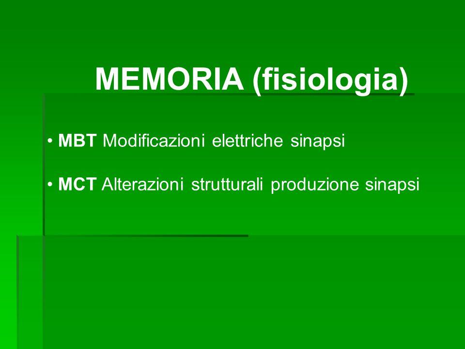 MEMORIA (fisiologia) MBT Modificazioni elettriche sinapsi