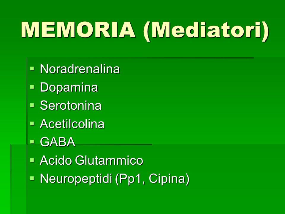 MEMORIA (Mediatori) Noradrenalina Dopamina Serotonina Acetilcolina