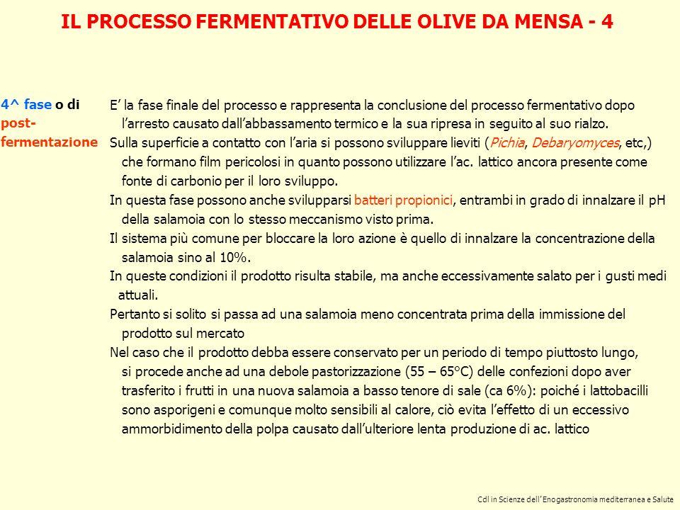 IL PROCESSO FERMENTATIVO DELLE OLIVE DA MENSA - 4