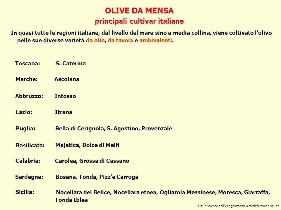 OLIVE DA MENSA principali cultivar italiane