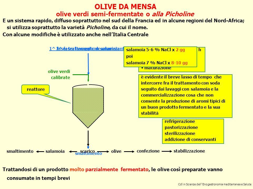 OLIVE DA MENSA olive verdi semi-fermentate o alla Picholine