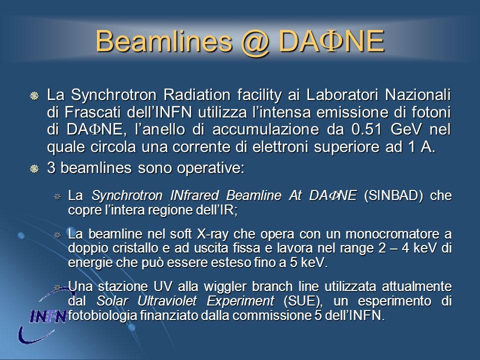 Beamlines @ DAFNE