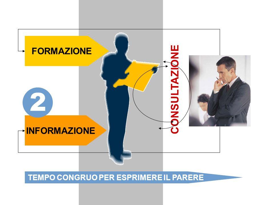 2. Consultazione: formazione, informazione, tempo congruo