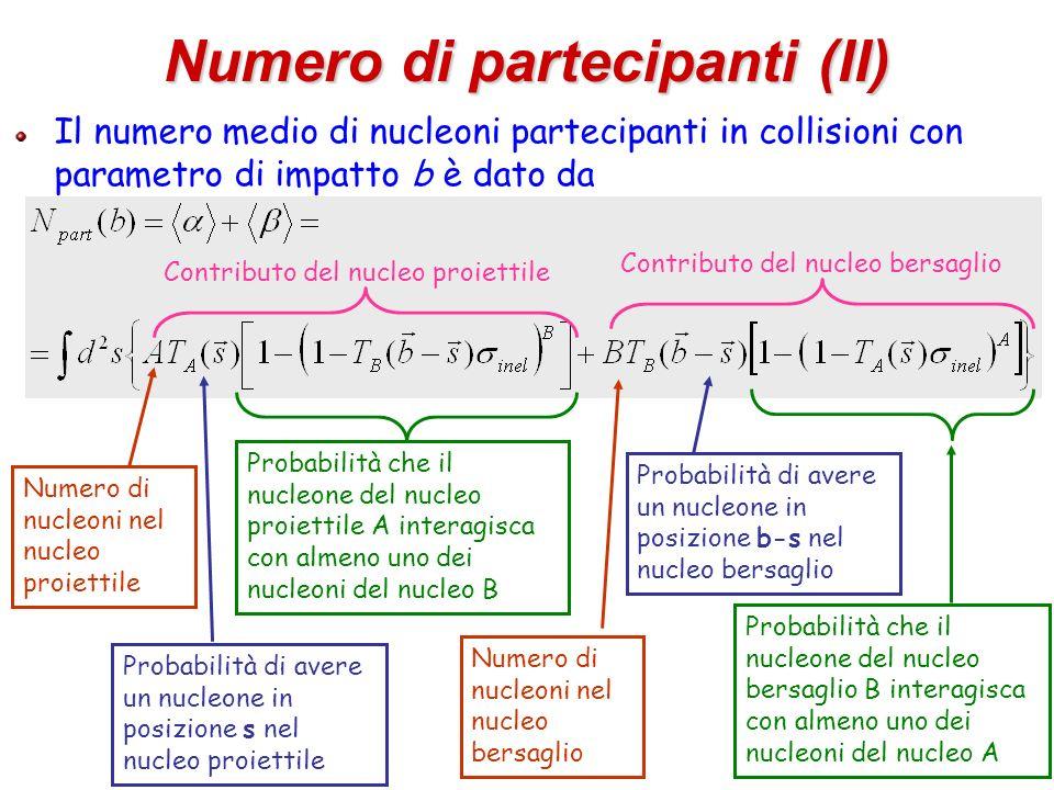 Numero di partecipanti (II)
