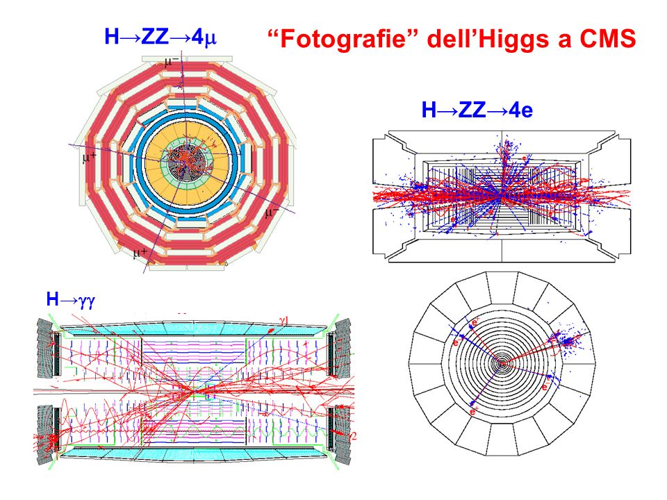 Fotografie dell'Higgs a CMS