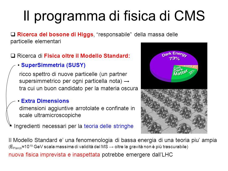 Il programma di fisica di CMS
