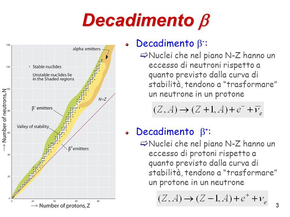 Decadimento b Decadimento b-: Decadimento b+: