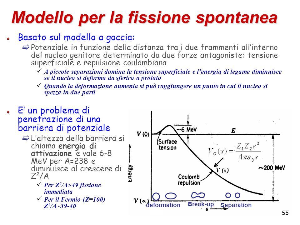 Modello per la fissione spontanea