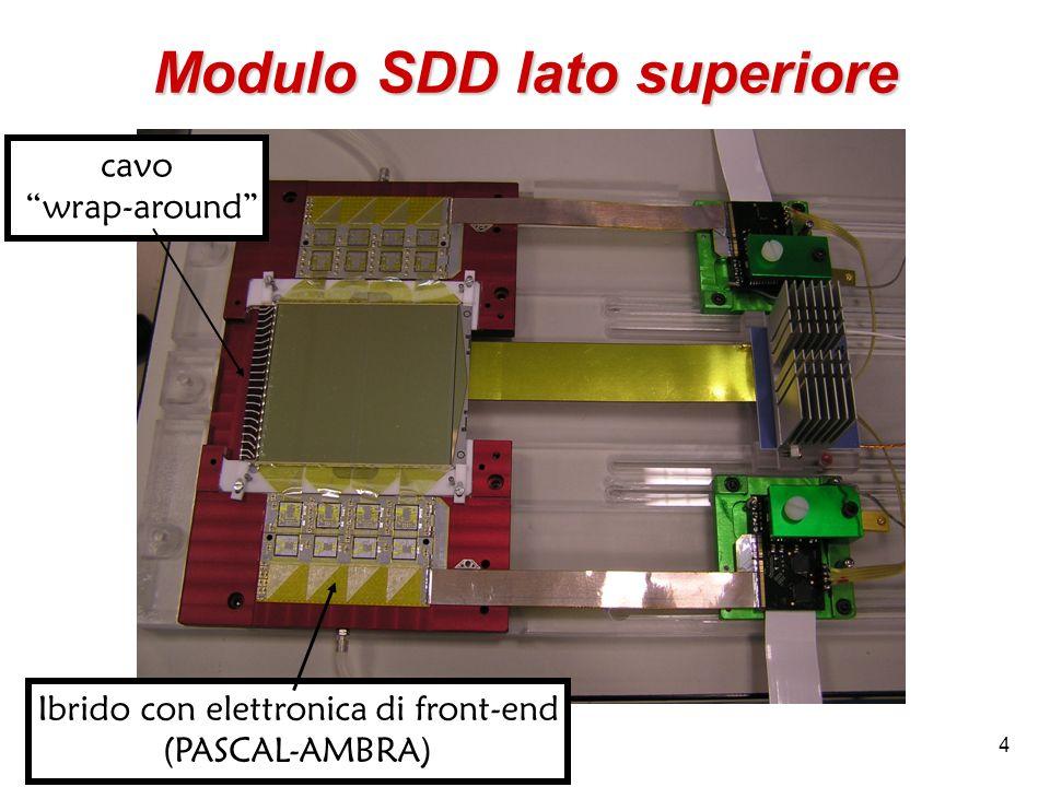 Modulo SDD lato superiore