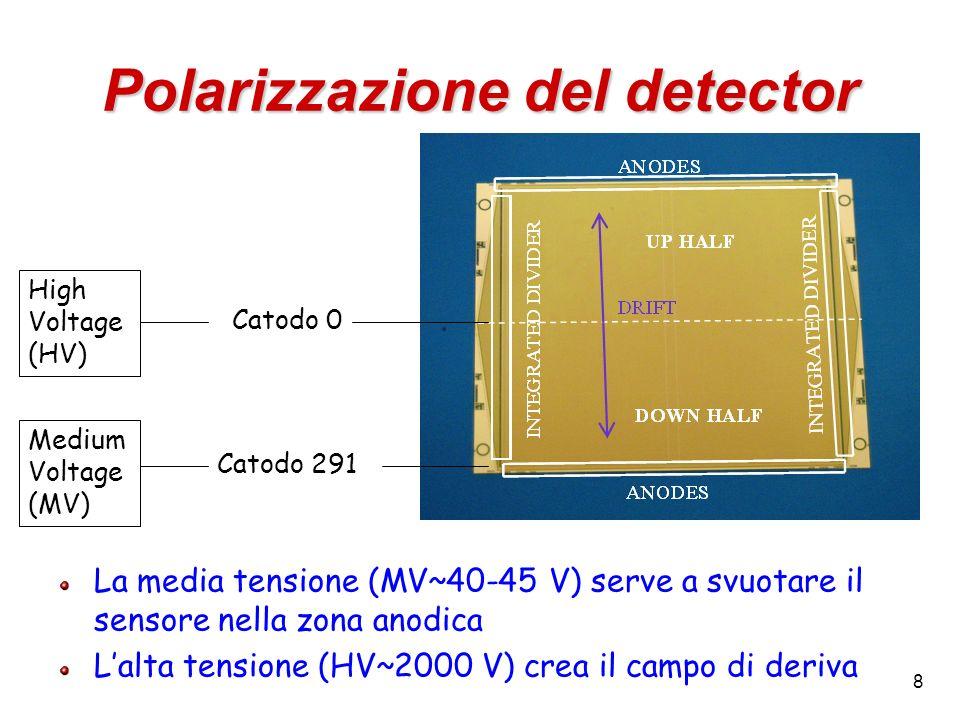 Polarizzazione del detector