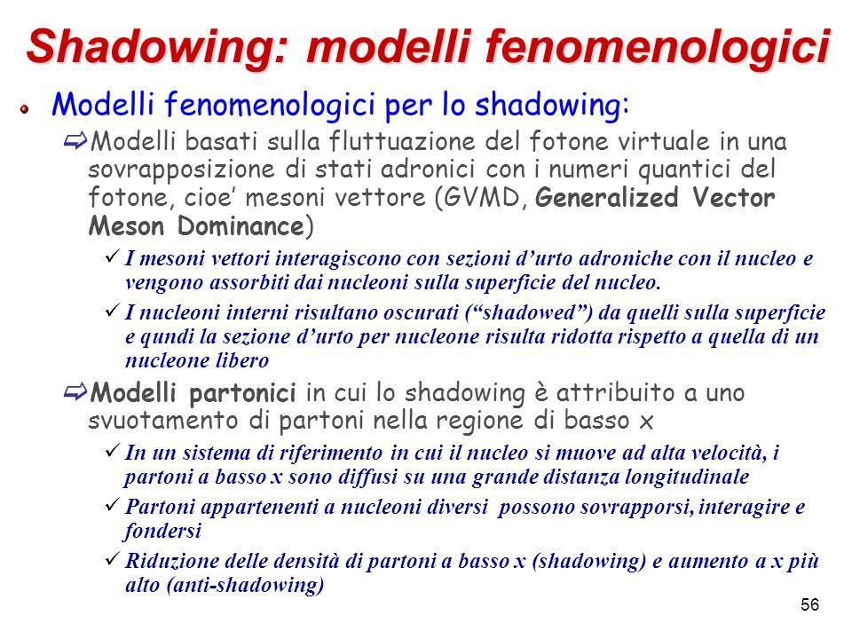 Shadowing: modelli fenomenologici