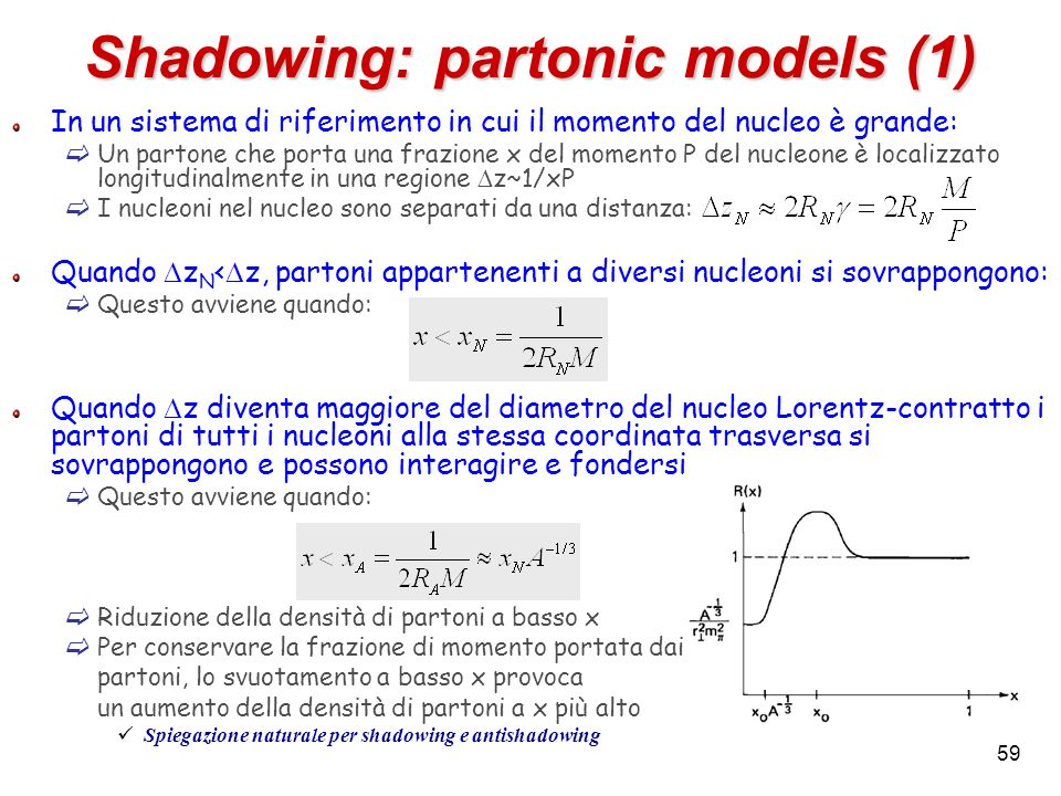 Shadowing: partonic models (1)