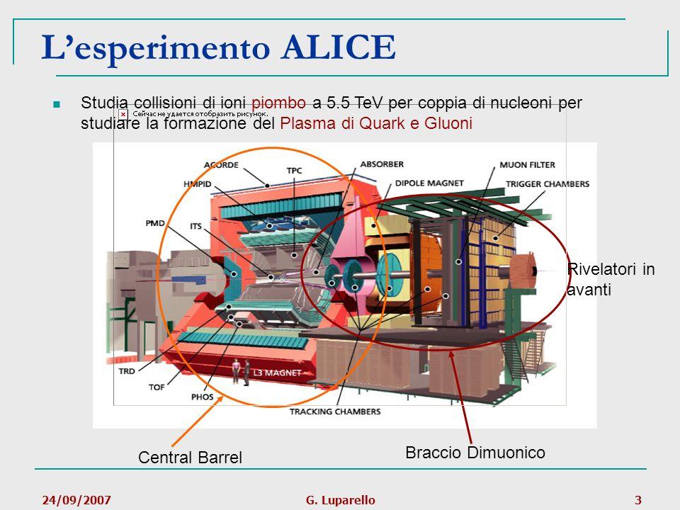 L'esperimento ALICE Studia collisioni di ioni piombo a 5.5 TeV per coppia di nucleoni per studiare la formazione del Plasma di Quark e Gluoni.