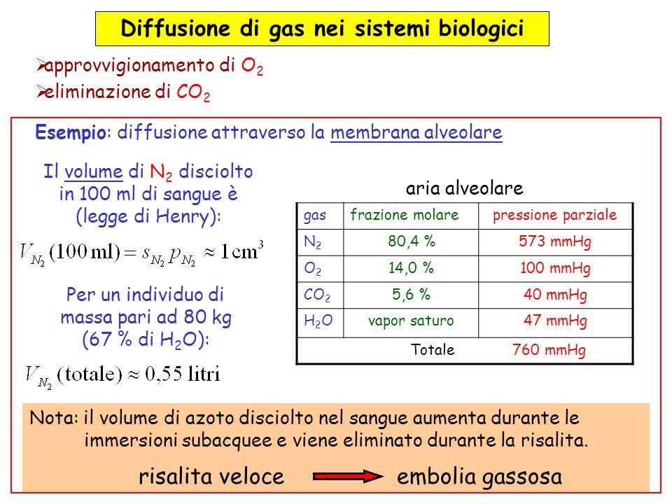 Diffusione di gas nei sistemi biologici