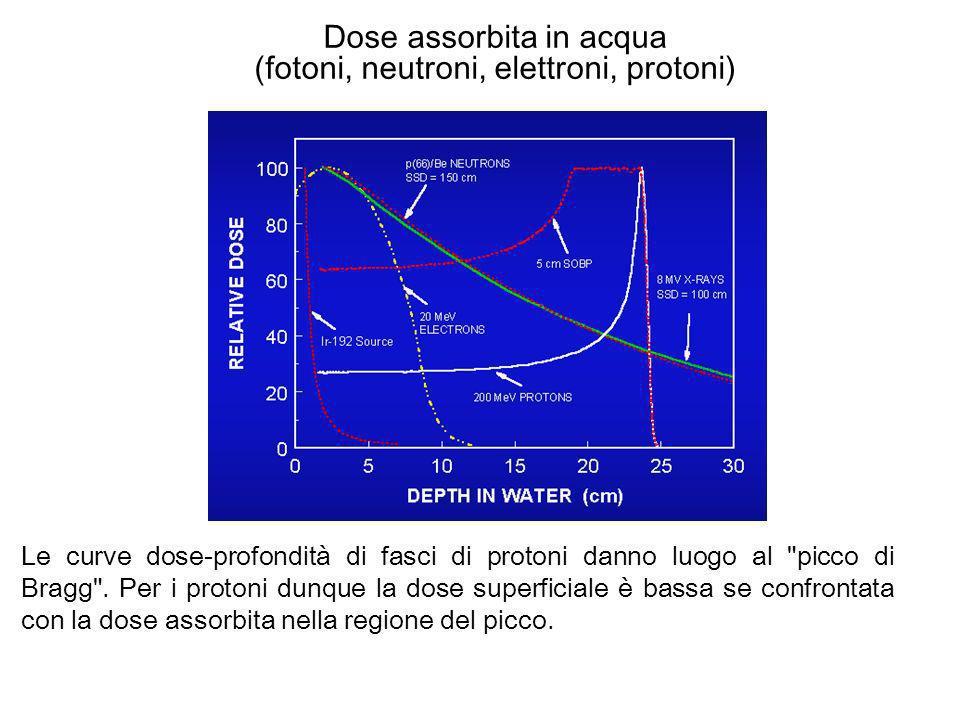 Dose assorbita in acqua (fotoni, neutroni, elettroni, protoni)
