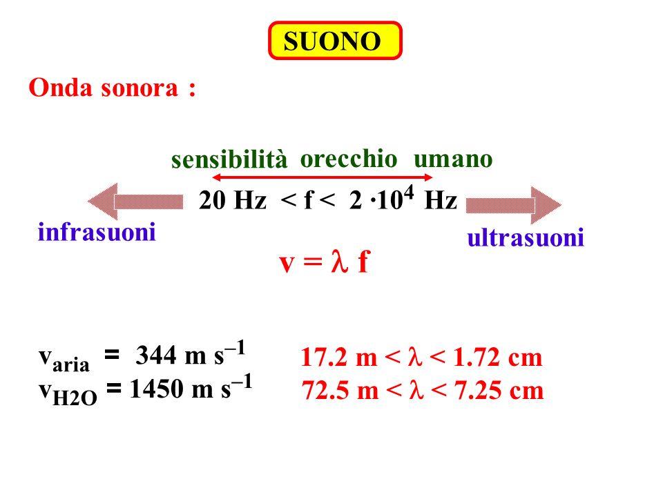 v = l f SUONO Onda sonora : sensibilità orecchio umano