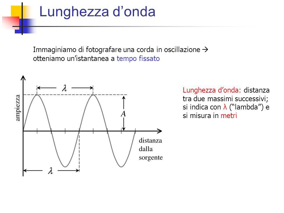 Lunghezza d'onda Immaginiamo di fotografare una corda in oscillazione  otteniamo un'istantanea a tempo fissato.