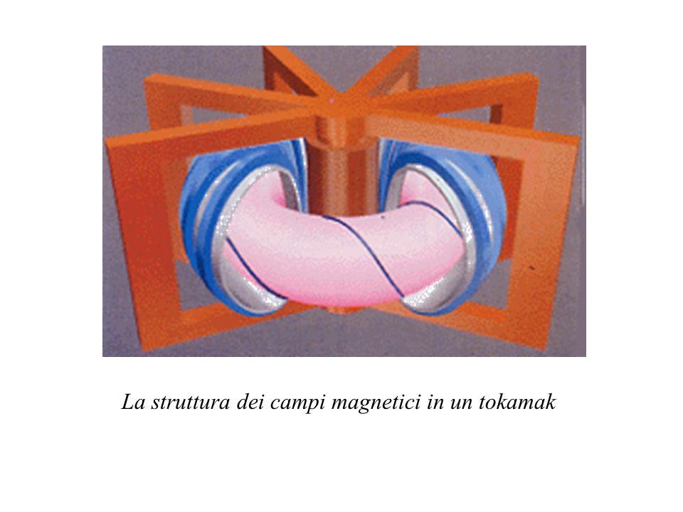 La struttura dei campi magnetici in un tokamak