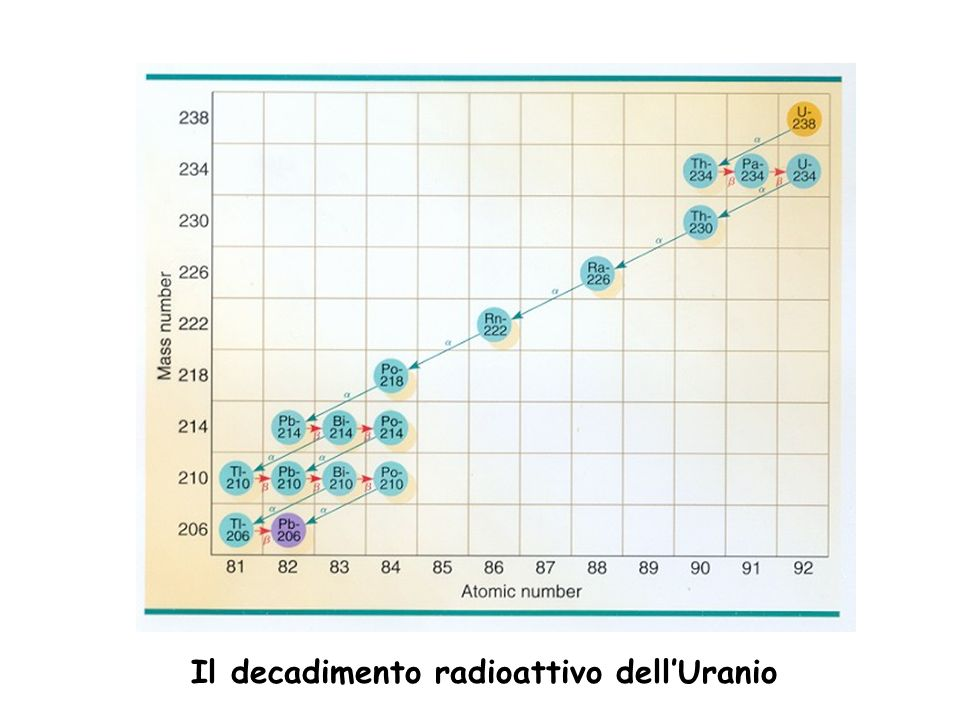 Il decadimento radioattivo dell'Uranio