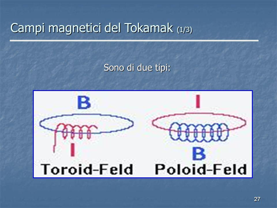 Campi magnetici del Tokamak (1/3)