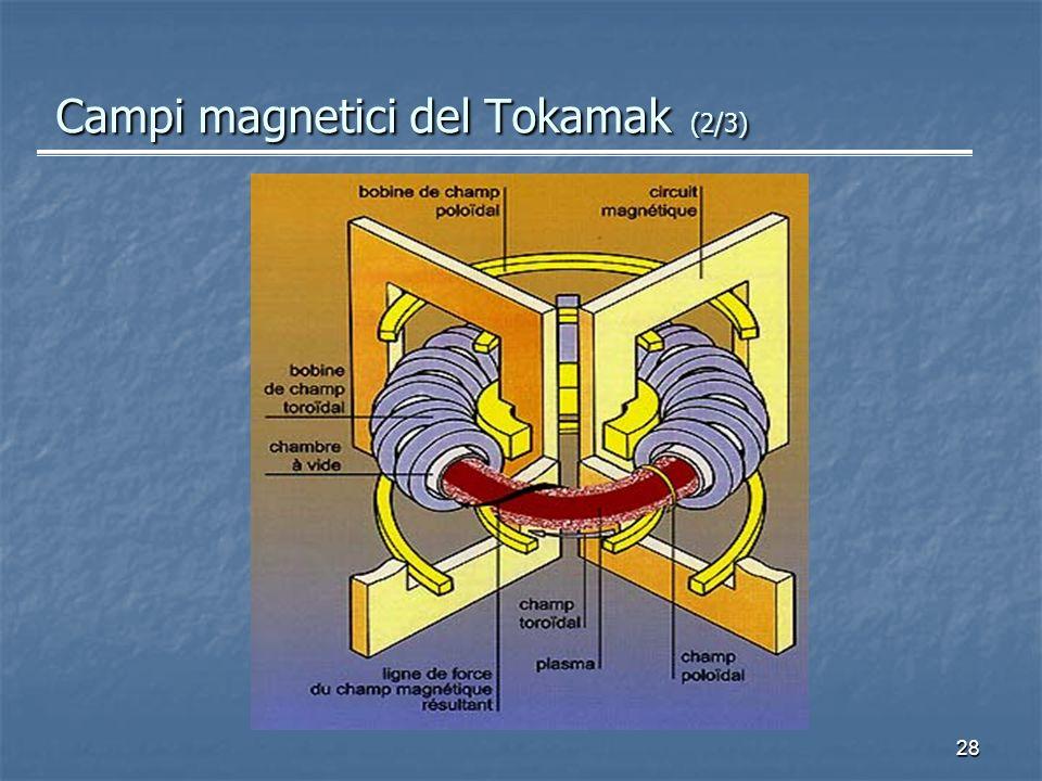 Campi magnetici del Tokamak (2/3)